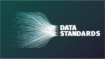 Decorative Image- Data Standards