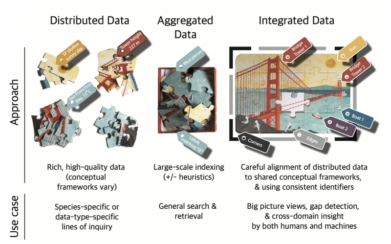 Illustration shows how different puzzle pieces come together to create a picture of a bridge. This offers an analogy for how different datasets come together through harmonization. Distributed data are aggravated and then integrated. This process allows individual data with different conceptual frameworks to be joined together (through large-scale indexing frameworks and consistent identifiers) to identify gaps and to allow for better analysis, both by humans and machines.