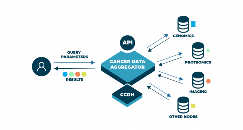 Illustration shows how different types of data can be aggregated for analysis. This aggregation is further enhanced by harmonization through the Center for Cancer Data Harmonization or CCDH and through the use of Application Programming Interfaces (API), which help to automate the aggregation-and-harmonization process, ultimately making it easier and more efficient to analyze data. Bringing such disparate data together allows for more informed research into how to prevent, diagnose, and treat cancer.
