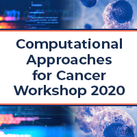 "Illustration that reads ""Computational Approaches for Cancer Workshop 2020"""