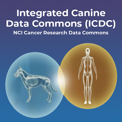 Integrated Canine Data Commons (ICDC) NCI Cancer Research Data Commons