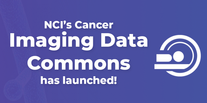NCI's Cancer Imaging Data has been launched