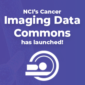 NCI's Cancer Imaging Data Commons has launched!