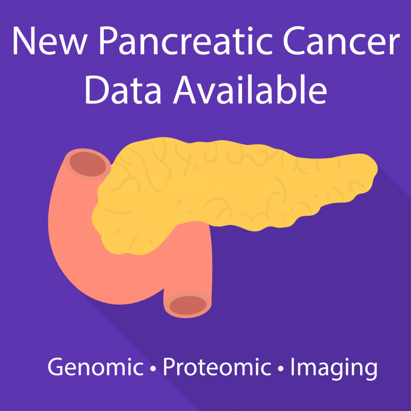 "Illustration of human pancreas. Text reads ""New Pancreatic Cancer Data Available. Genomic, Proteomic, Imaging."""