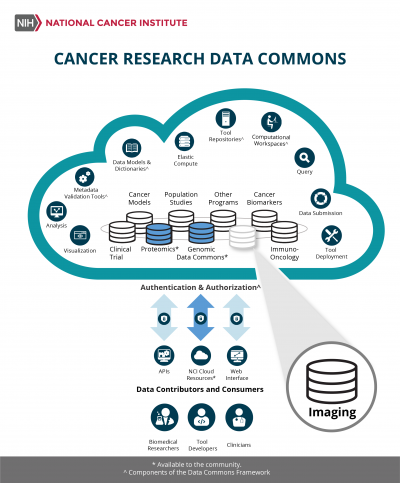 Cancer Research Data Commons Infographic highlighting the Imaging Data Commons node.