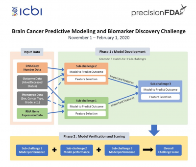 Brain Cancer Predictive Modeling and Biomarker Discovery Challenge