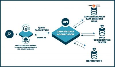 The functionality of the cancer data aggregator can be described as this: a user is currently on a data portal or application (for example one of the NCI Cloud resources from the Broad Institute, ISB, or Seven Bridges Genomics). That application will connect to the Cancer Data Aggregator through an API that allows users to query parameters for data sets. The aggregator then queries across the Cancer Research Data Commons (which will be secured by Auth/AuthZ authentication), NCI Data Coordinating Centers, an