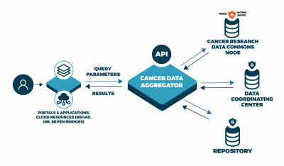 The functionality of the cancer data aggregator can be described as this: a user is currently on a data portal or application. That application will connect to the Cancer Data Aggregator through an API that allows users to query parameters for data sets. The aggregator then queries across the Cancer Research Data Commons, NCI Data Coordinating Centers, and other NIH repositories, aggregating data that matches that query. The data will return to the aggregator to be transformed through a common data model.