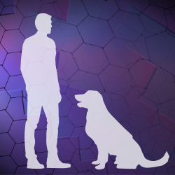 Silhouette of a man and dog facing each other with a purple geometric shape background.